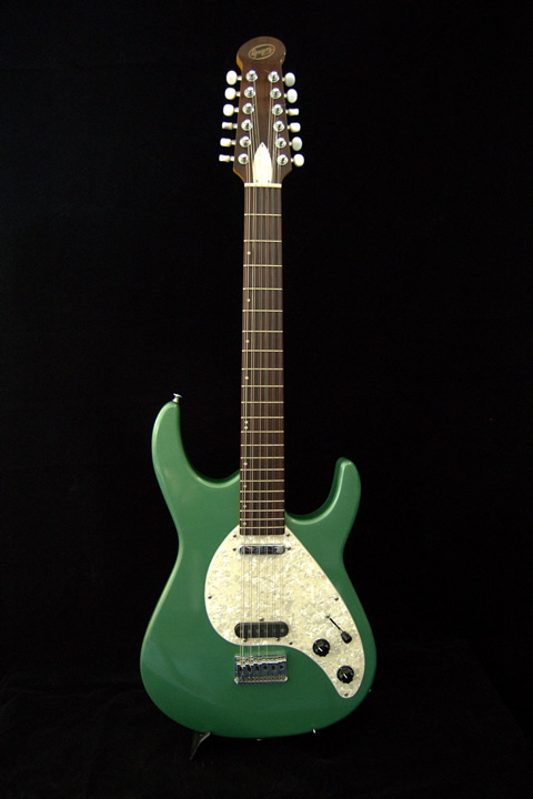 DG Hand built Electric 12-string