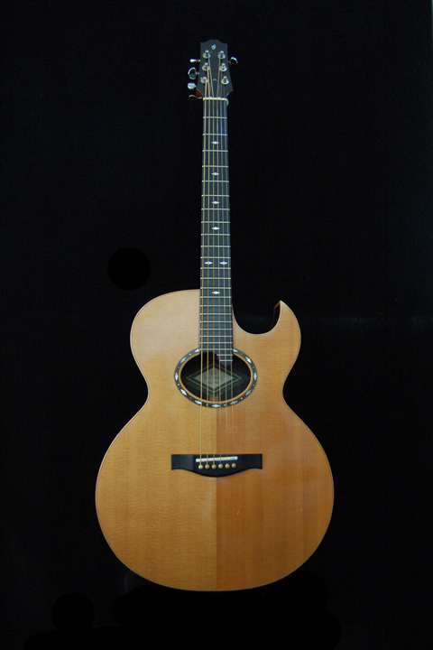 Mike Tavener's Guitar No 101